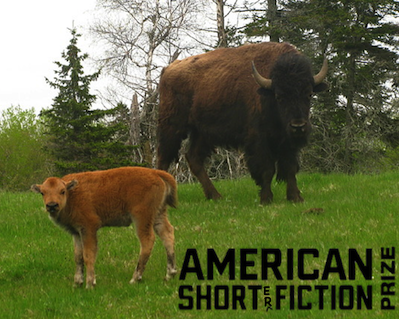 AmericanShort(ER)FictionPrizeImage
